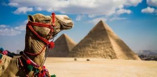 Горящий тур в Египет !!!
