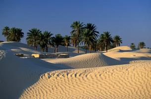 Тунис : прямой вылет из Омска!